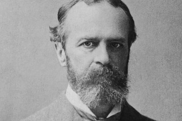 Portrait of American philosopher, psychologist, and educator William James.