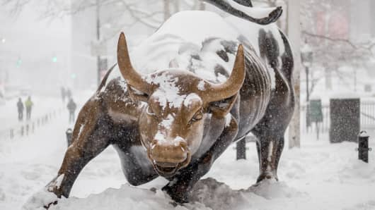 Wall Street Bull Blizzard