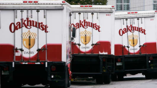 Oakhurst Dairy trucks are lined up in Portland, Maine.