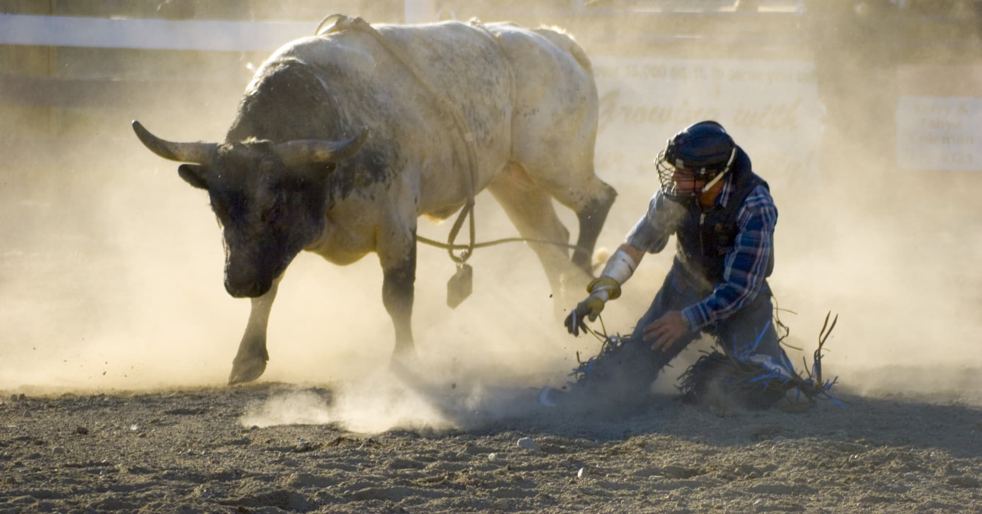 Bull market may find it hard to keep this momentum, but that doesn't mean it's over