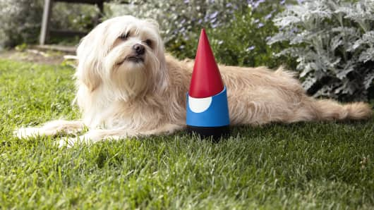 Google Gnome helps make your connected yard dreams a reality.