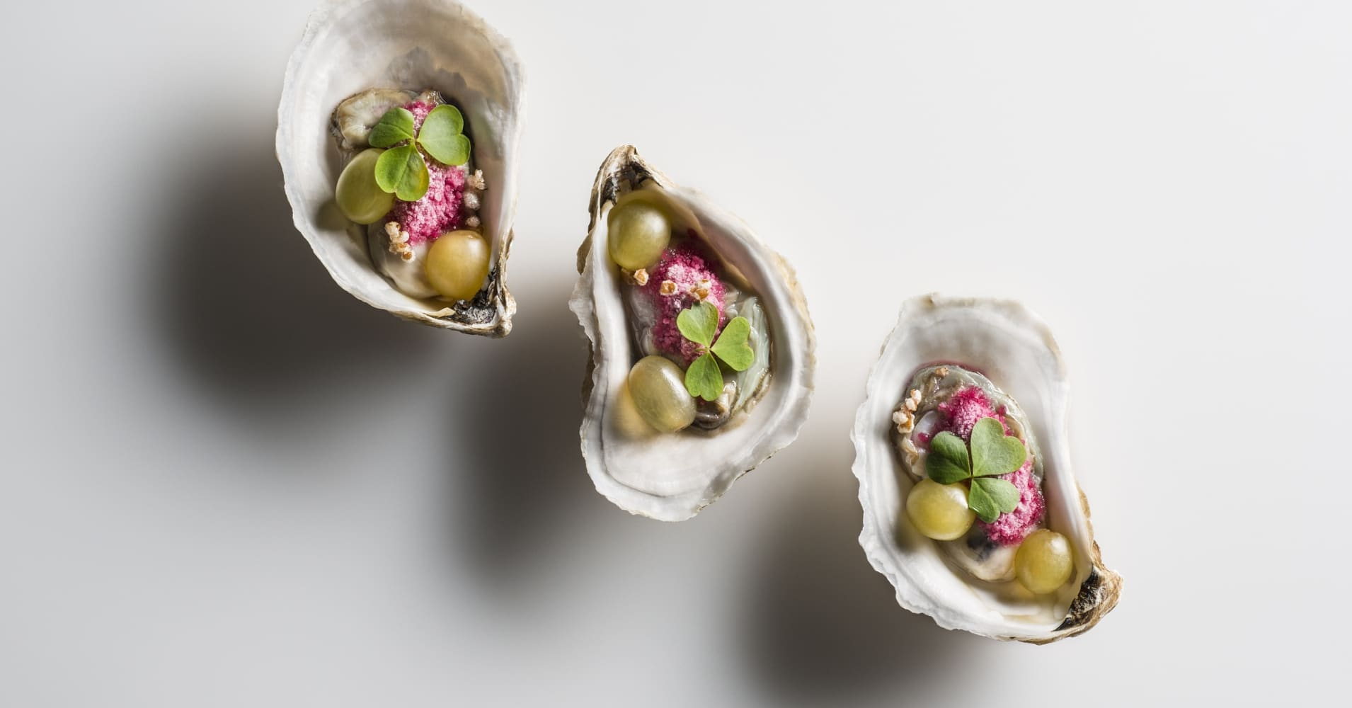 Oysters at Eleven Madison Park