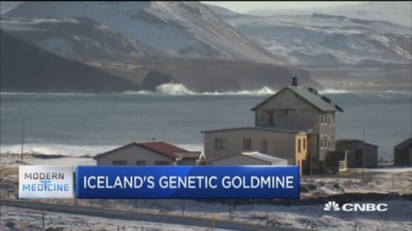 Why Iceland's unique properties make it a goldmine for genetics research
