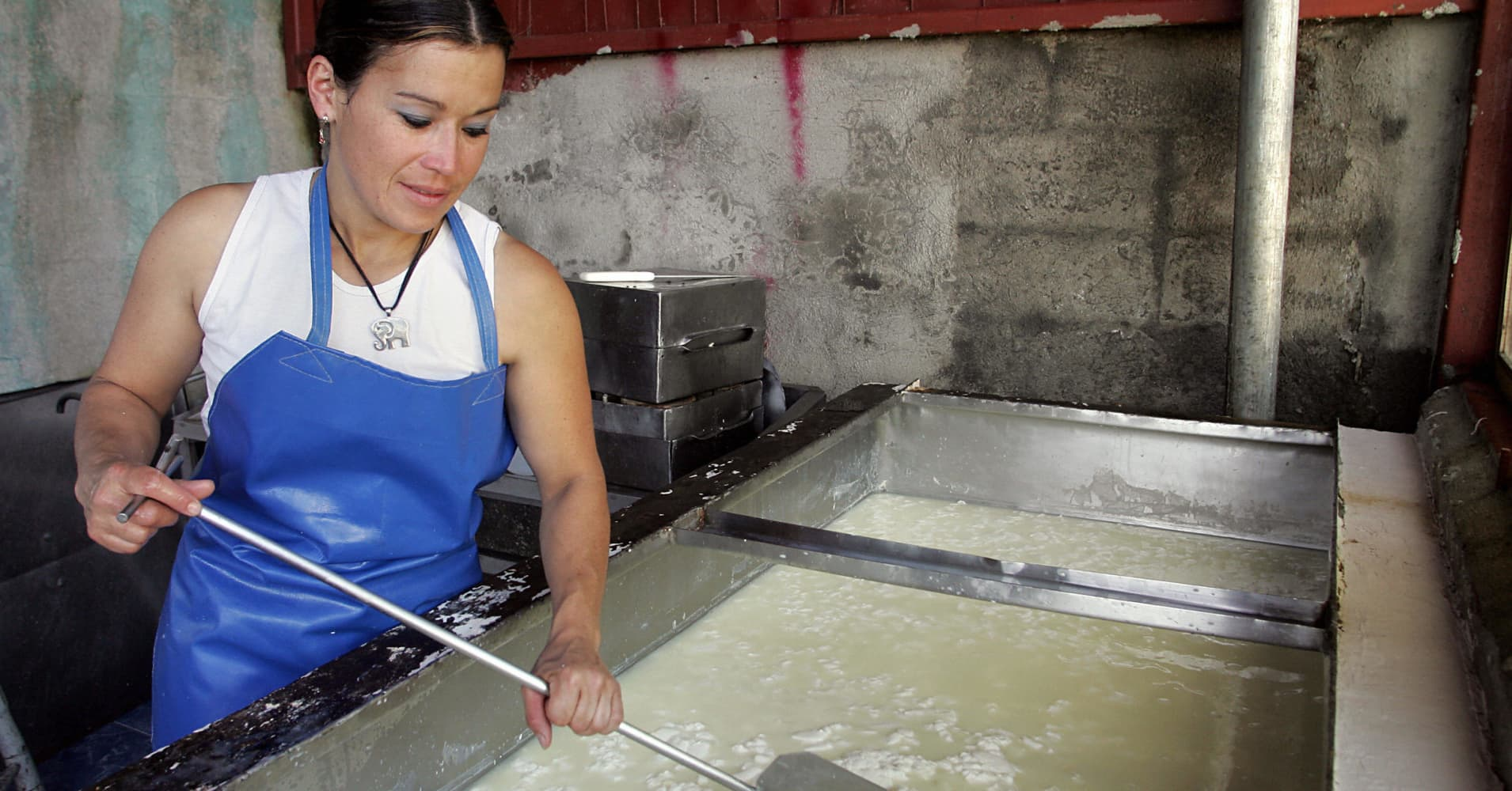 A woman produces cheese according to organic farming procedures at the farm La Esperanza in Platanares de Moravia, 12 km north of San Jose.