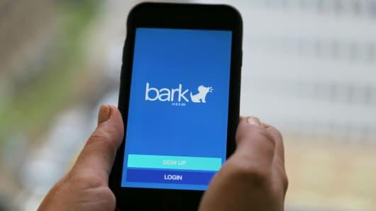 Bark online