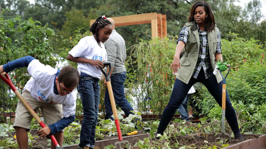First lady Michelle Obama (R) works with students to harvest sweet potatoes in White House Kitchen Garden on the South Lawn of the White House October 6, 2016 in Washington, DC.