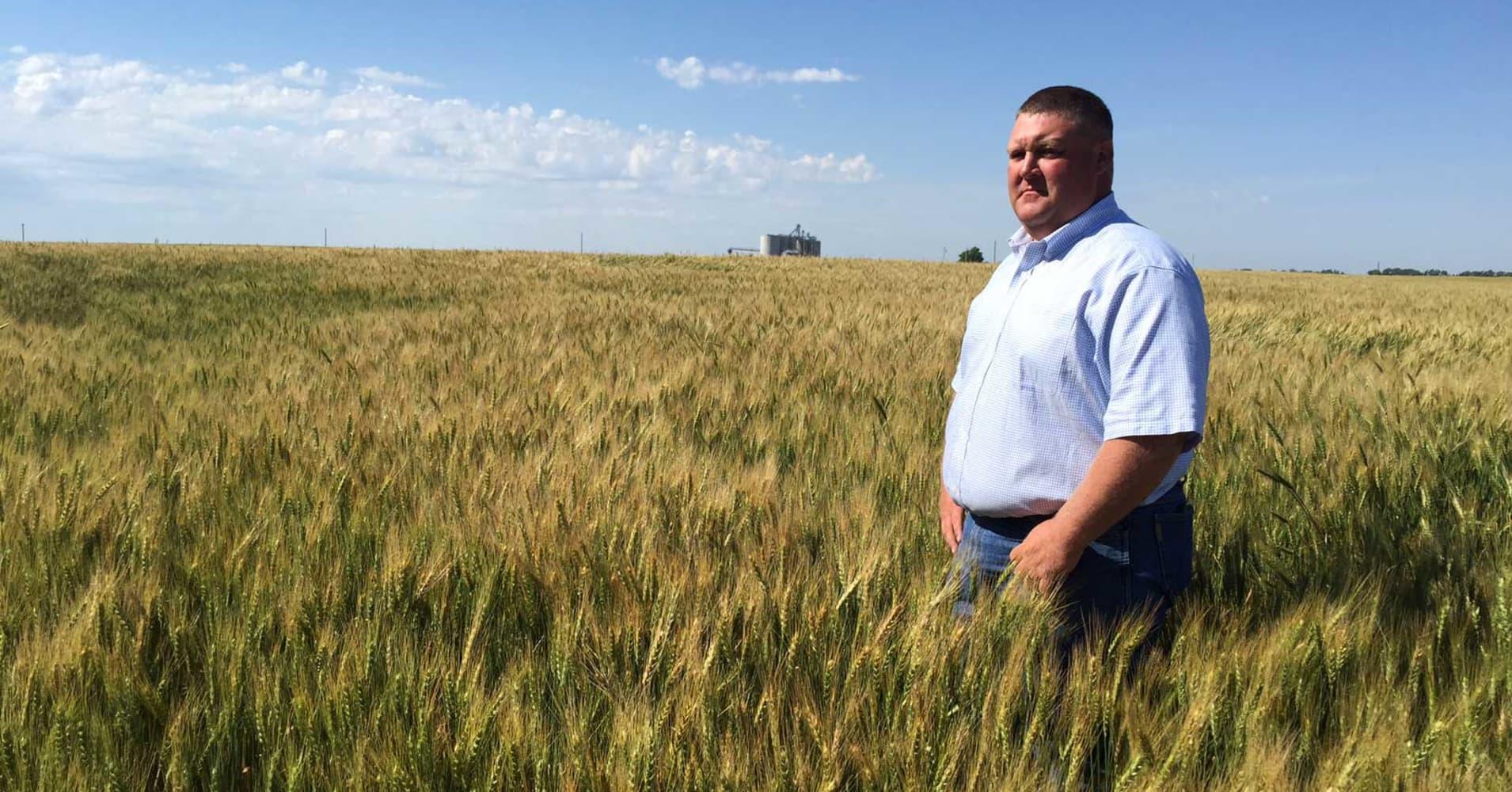 farm subsidies  trump budget has agriculture industry worried