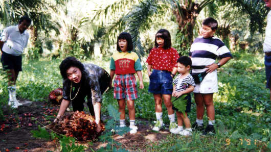The Tanoto family at an oil palm plantation.