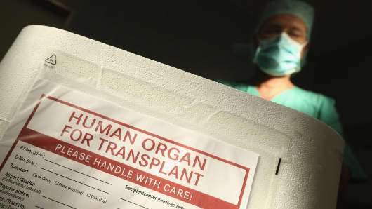 An employee wearing a surgical mask stands over an empty Styrofoam box used for transporting human organs
