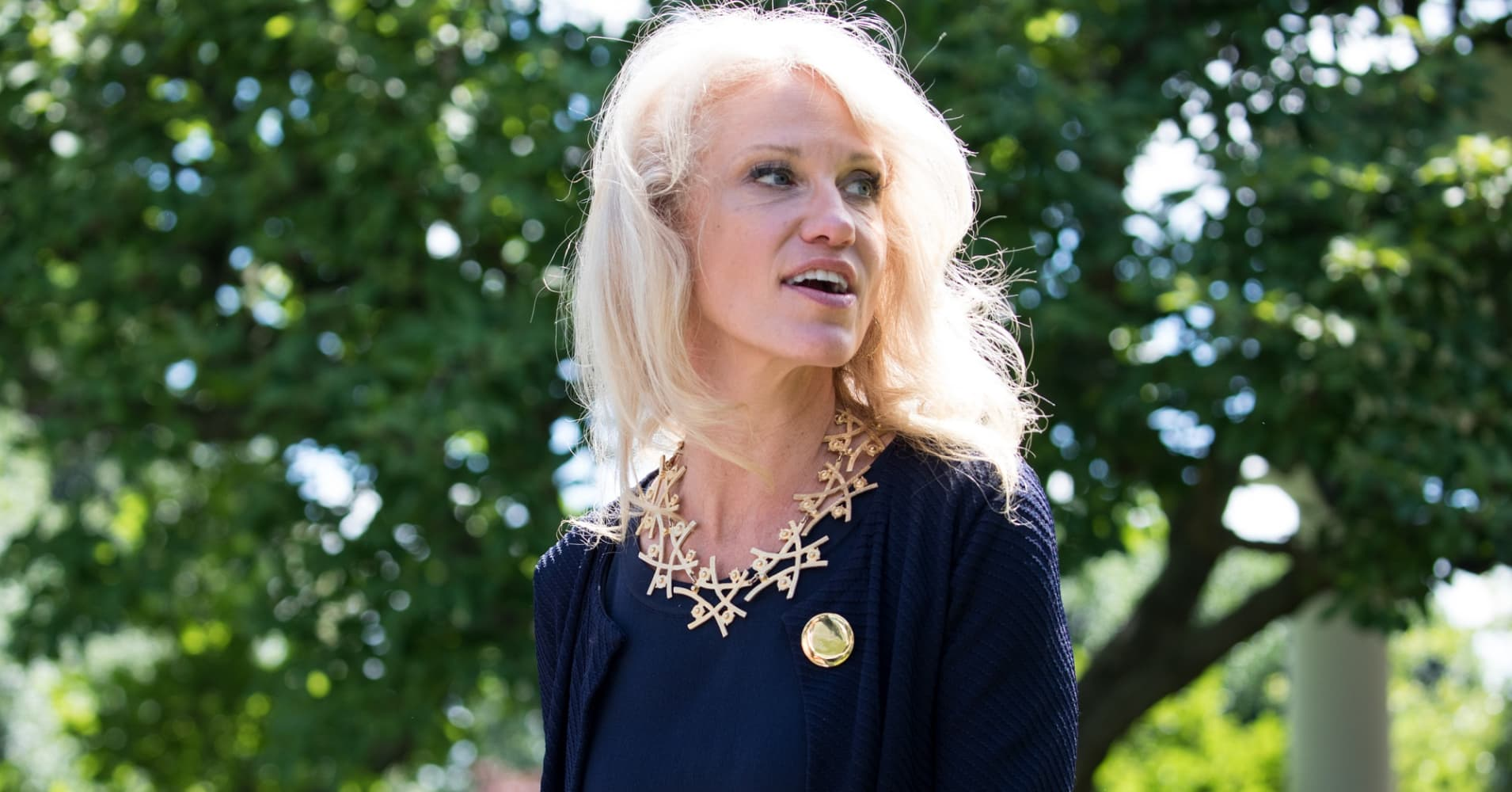 Kellyanne Conway, Senior Counselor U.S. President Donald Trump, takes home $179,700 for her White House job.