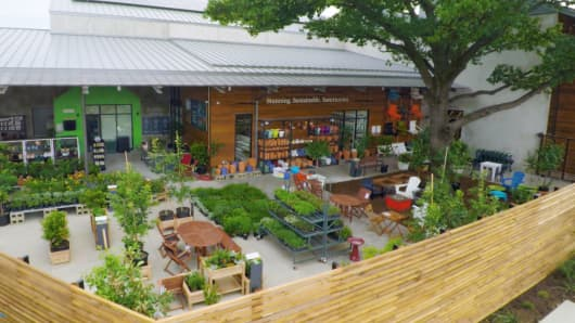 TreeHouse garden center.