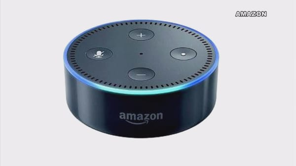 This was the most popular product sold during Amazon Prime Day