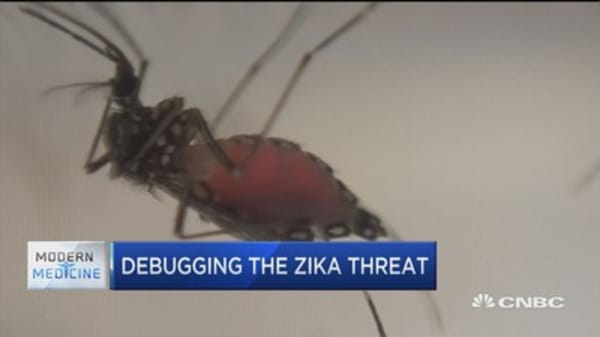 Google working to debug the Zika threat