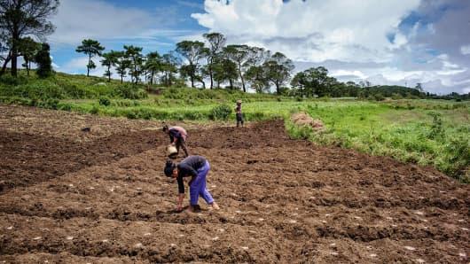 Farmers work in fields in Meghalaya, India, on August 10, 2016.