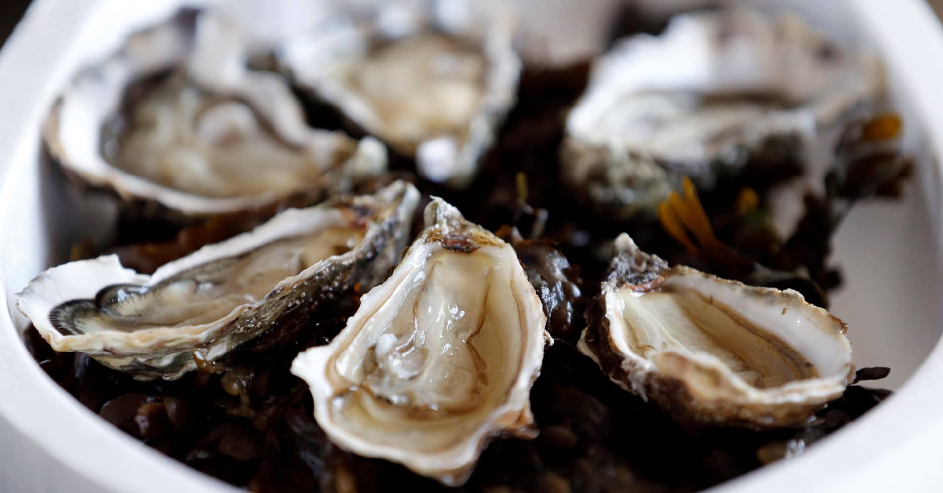Oysters are pictured on the Re Island, where an automatic oyster vending machine is set at l'huitriere de Re in Ars en Re, Southwestern France, August 2, 2017.
