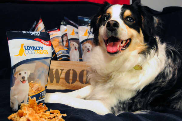 Innovate Niagara offered guidance to Leendert Bolle, owner of Loyalty Dog Treats. The all-natural dog food company is currently pulling in about $2 million in annual revenue.