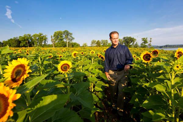 Daniel Price in his Sweet Virginia Foundation field of flowers.