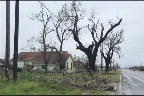 Expects More Than  Harvey Disaster Victims To File For
