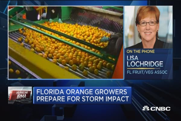 Florida Fruit and Vegetable Association: We are number one in US for oranges and grapefruit