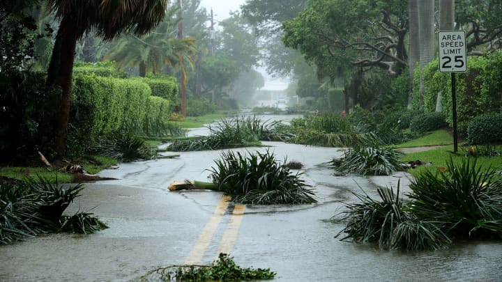 Broken tree branches block roads in the Coral Beach neighborhood as Hurricane Irma hits the southern part of the state September 10, 2017 in Fort Lauderdale, Florida.