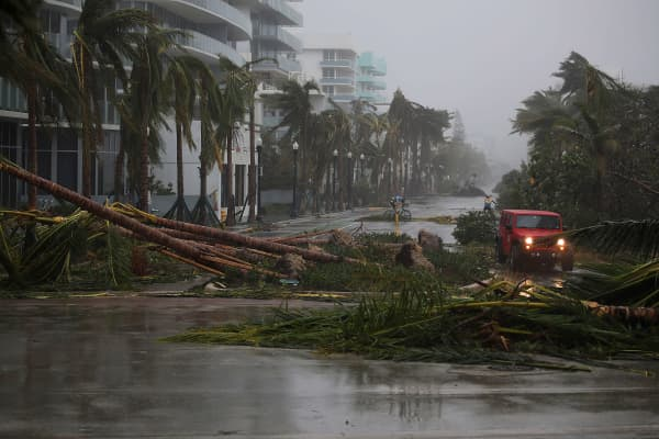 A vehicle passes downed palm trees and two cyclists attempt to ride as Hurricane Irma passed through the area on September 10, 2017 in Miami Beach, Florida.