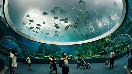 Chimelong Ocean Kingdom is Hengqin's anchor attraction.