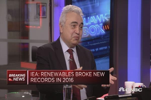 Solar making big inroads in energy market, IEA director says