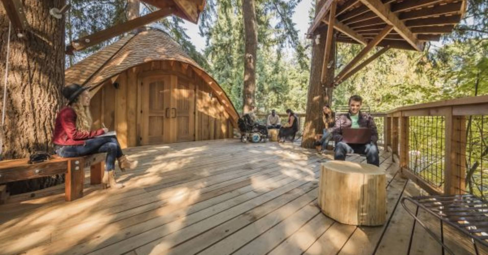 Microsoft built treehouse offices for employees on