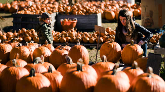 Austin Andres and her son Quinn, 2, shop for pumpkins at Maple Acres Farm in Plymouth Meeting, Pa., Tuesday, Oct. 17, 2017.