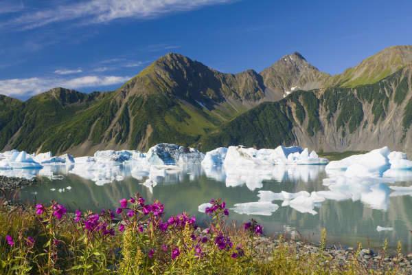 Bear Glacier Lake,  Kenai Fjords National Park, Anchorage,  Alaska.