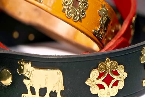 Luxurious collars sold at Canine Styles