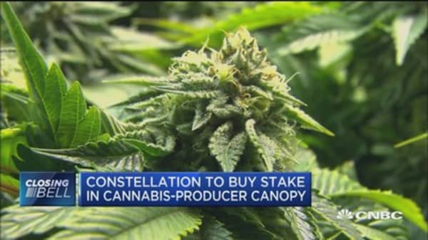 Constellation to buy stake in cannabis-producer Canopy