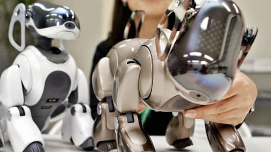 A Sony employee displaying a previous model of AIBO the robotic dog at the company's headquarters in Tokyo
