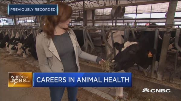 Where the jobs are: High demand for animal health positions
