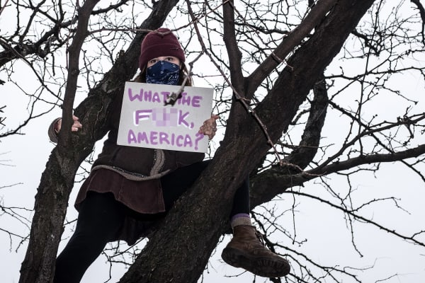 A protester in a tree displays a placard as part of the Women's March which nationwide campaigned for legislation and policies regarding human rights, women's rights, immigration reform, healthcare reform, the natural environment, LGBTQ rights, racial equality and freedom of religion in response to the newly elected presidency of Donald Trump.