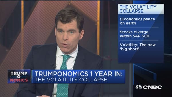 Trump's first year ushers in era of low volatility