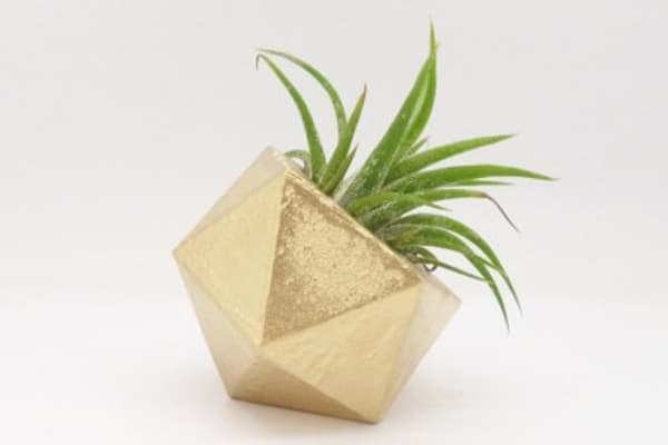 Gold geometric air plant holder, modern mini planter.