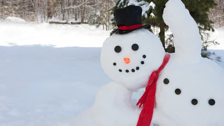Guests can purchase everything - except snow - need to make a snowman at the Fairmont Chicago, Millennium Park.