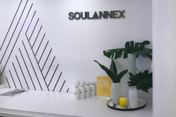 Soul Annex