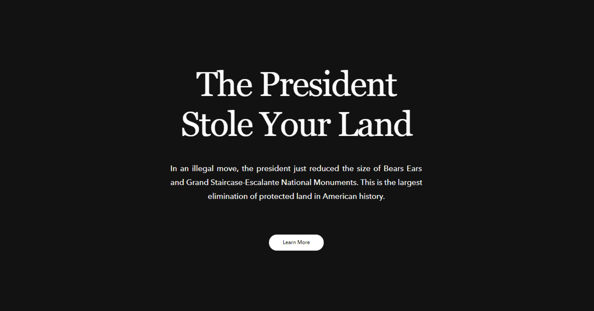 Patagonia displayed a message of protest on its website.