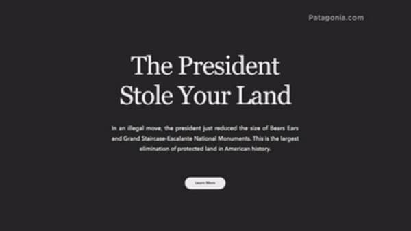 Patagonia just took a big swing at Trump