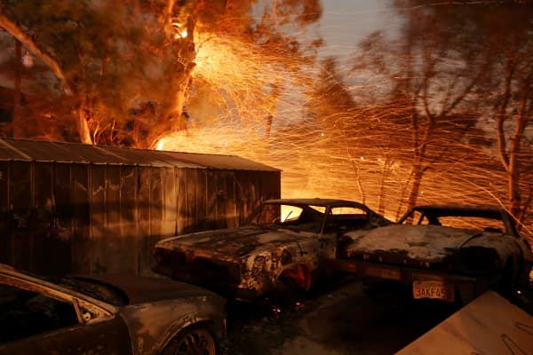 Embers blow from a tree shortly before it fell down near burned cars as strong winds push the Thomas Fire across thousands of acres near Santa Paula, California, U.S., December 5, 2017.