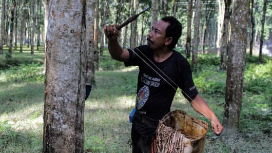 Nov 17, 2017: A worker taps a rubber tree in Asahan Regency, North Sumatra, Indonesia.