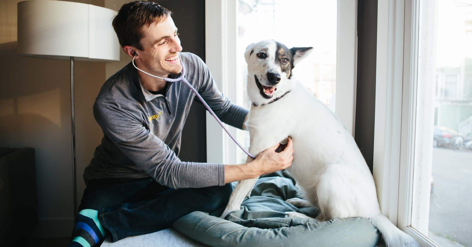 Start-up Fuzzy offers house calls for your pets for $468 a year