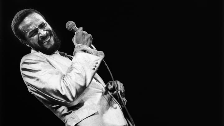 Marvin Gaye performs on stage in Rotterdam, Netherlands, July 1, 1980.