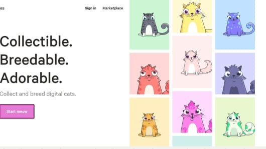 Using Cats to Explain Blockchain Technology