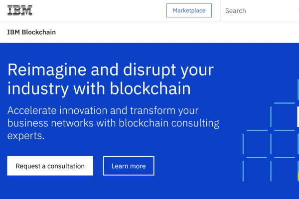 IBM blockchain projects