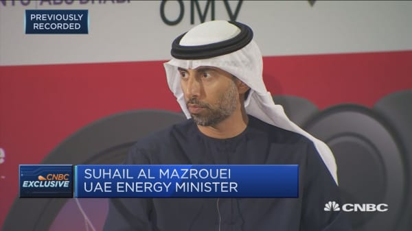 UAE energy minister: Confident in OPEC's ability