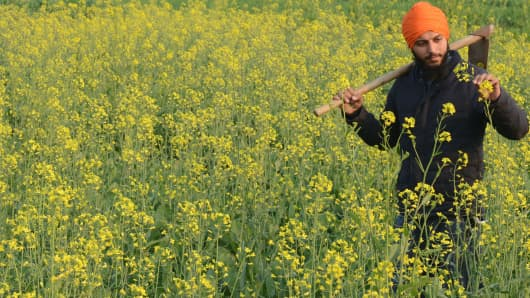 January 21, 2018: Indian farmer Neeraj Singh walks through his mustard field on the outskirts of Amritsar on the eve of Basant Panchmi, a festival that celebrates the onset of spring.