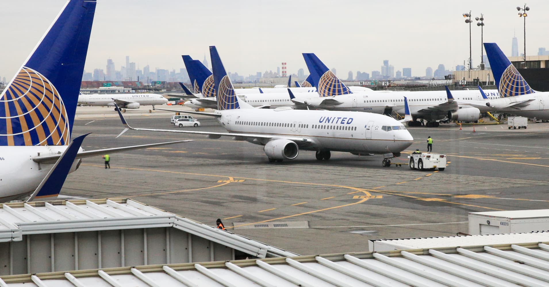 United Airlines pauses cargo-hold pet transport after missteps